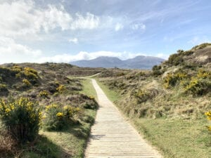 Board walk with Mourne Mountains